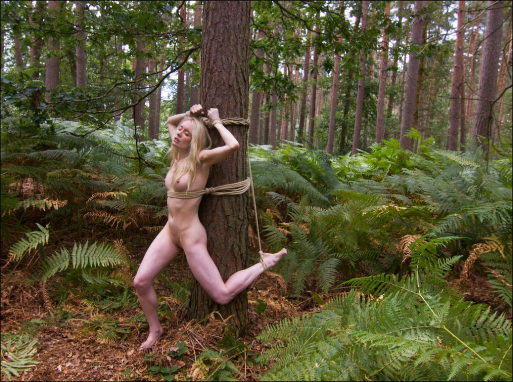 In the wood porn pics and